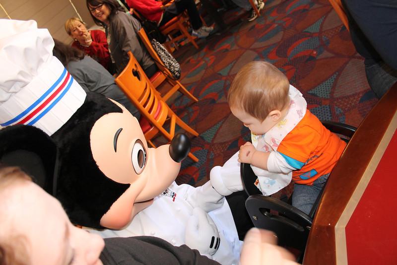 Disney 20141322