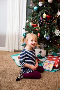 2017 Christmas-3