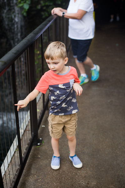 2018 Omaha Zoo 04