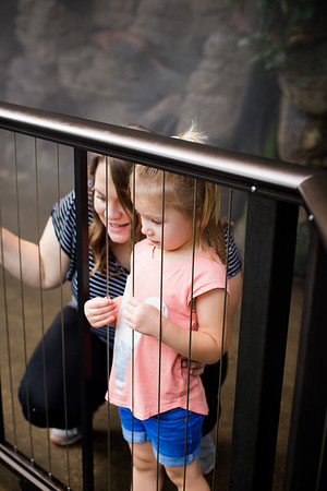 2018 Omaha Zoo 09