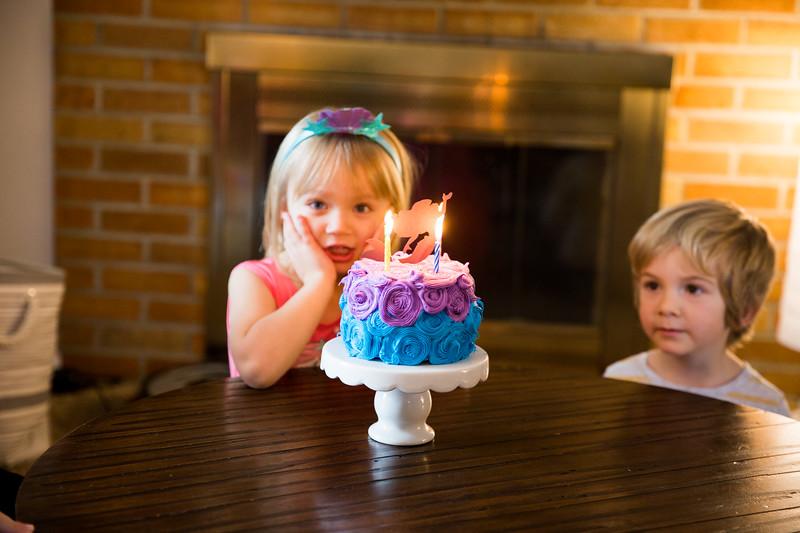 4th Birthday Party-018