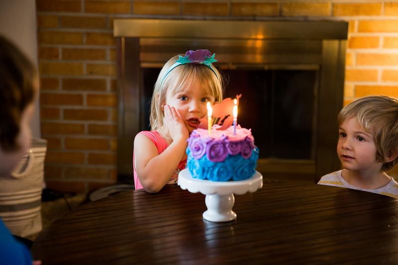 4th Birthday Party-019