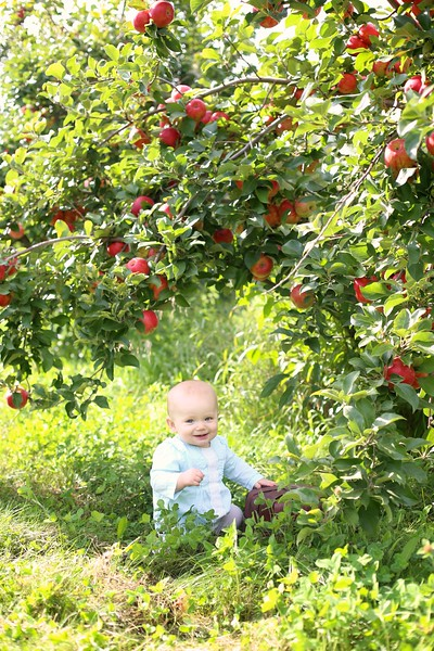 Orchard 018 | Nicole Marie Photography