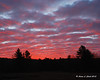 Sunrise - Gilsum, NH<br /> Bright colors along the side of the road