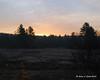 Sunrise - Gilsum, NH<br /> A frosty sunrise over a swamp