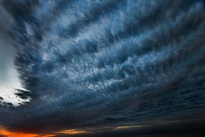 Palm Harbor Sunset series