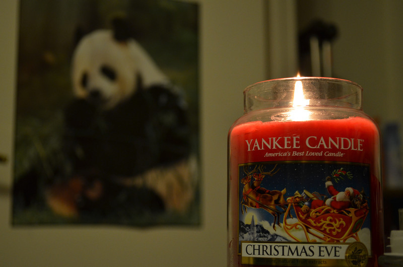 January 8, 2012 - Panda with candle (which smells great)