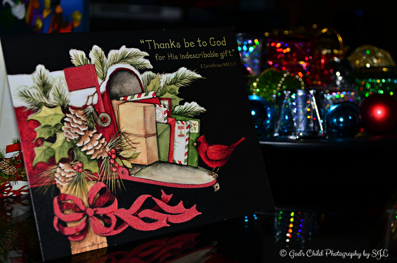 Christmas card from my best friend<br /> <br /> (photo taken 12/25/2012)