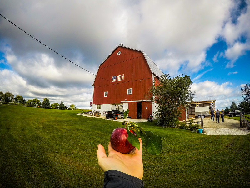 But first a tasty apple right from the tree :)