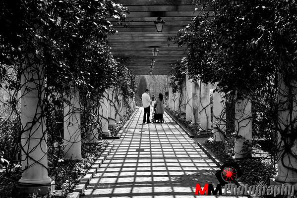 Botanical gardens 2011