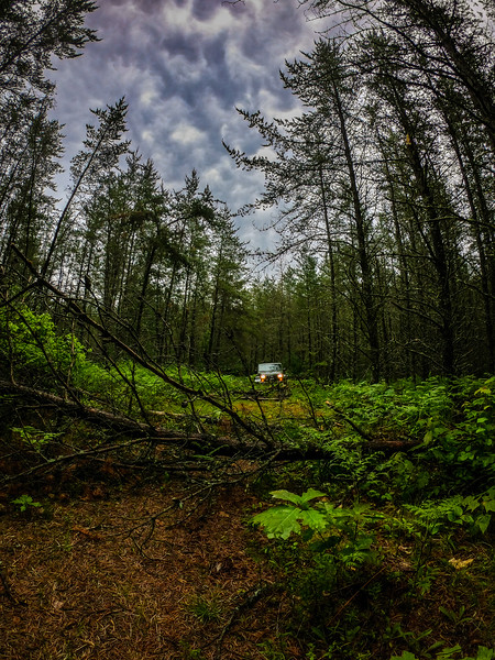 Two tracking was a blast until I came to 4 massive trees down in the way.
