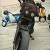 Rat Bike, Croatia - July 2009