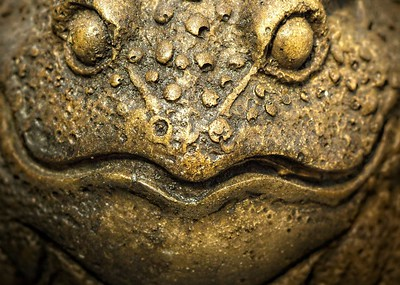 BRASS FROG FACE