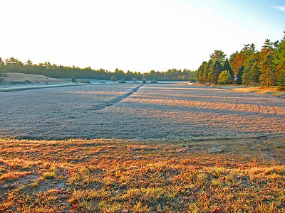 Frosty morning in cranberry country, October 31, 2011