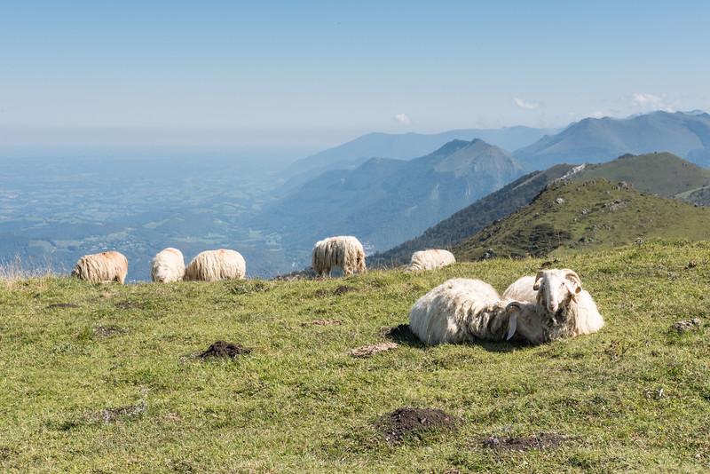 De l'autre côté de l'entrée de la vallée d'Ossau la montagne du Rey