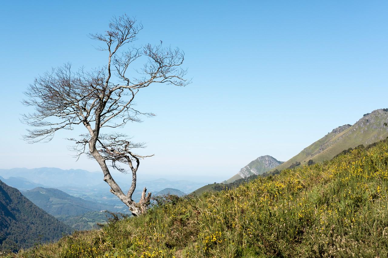 Vue vers l'ouest, au loin le pays basque