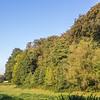 La lisière du bois de Rixensart