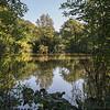 La drève des étangs
