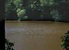 Jeux de lumière sur l'étang Gillet