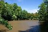 Etang Gillet<br /> dans le parc communal<br /> <br /> Ce qui subsistent des étangs plus grands, mais comblés en 1856 par crainte que le talus du chemin de fer ne s'effondre.<br /> Cet étang fut rouvert vers 1930 par M. Gillet et incorporé au Parc Communal en 1971.
