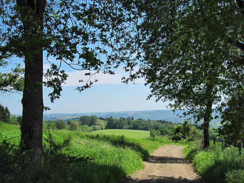 Point de vue sur la vallée de l'Ourthe
