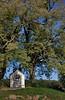 """Chapelle Notre-Dame du Bon-Secours<br /> <br /> A l'ombre de deux tilleuls majestueux, elle est située au lieu-dit """"Fond del Côre"""", au croisement des chemins menant à Thon, Strud, Bonneville et Goyet.<br /> <br /> """"Elle fut érigée en 1850 suite, dit-on, à une promesse faite par deux frères.<br /> <br /> Ils circulaient en carriole sur le chemin de Goyet à Bonneville et furent surpris par un orage très violent. Leurs chevaux s'emballèrent. Les deux frères promirent d'ériger une chapelle à la vierge s'ils en réchappaient. A ce moment, le timon de la carriole se brisa et celle-ci s'arrêta, laissant la vie sauve aux deux frères. """"<br /> <br /> Cf : <a href=""""http://www.valdesamson.be/patrim/index.php"""">http://www.valdesamson.be/patrim/index.php</a>"""