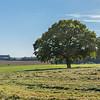 Soleil d'automne sur la campagne