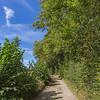 Un beau chemin près de Sorinne
