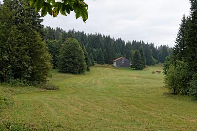 31-08 Combe de l'Arbey