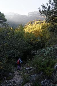 Vallon du Ruisseau de la Beaume, face au Pas des Ifs