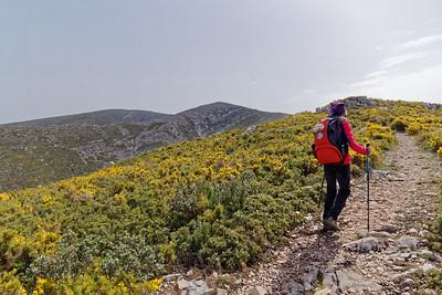 Sur les crêtes - Remontée au Mont St Cyr
