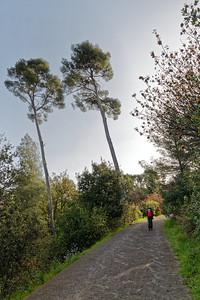 Parc des Bruyères