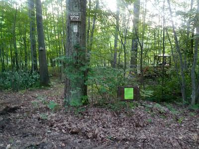 Hill Street Nature Trail