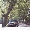 Range Rover 216