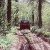 Range Rover 229