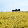 Range Rover 302