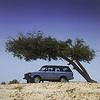 Range Rover 226
