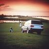 Range Rover 288