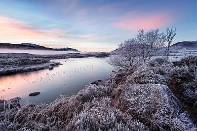 Sunrise Rannoch