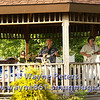 The Carl Filbert Band in the Ransomville Library gazebo.