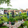 2013 Community Faire in Ransomville, NY