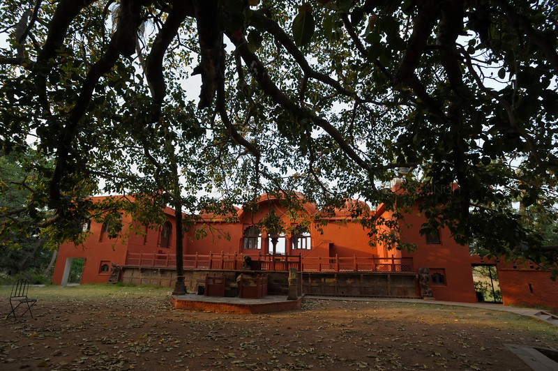A forest rest house (Jogi Mahal) near a massive Banyan or Ficus benghalensis tree in Ranthambhore