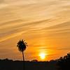 Sunset in Ranthambhore