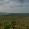 Panorama of the lush green forests of Ranthambhore national park just after the monsoon rains