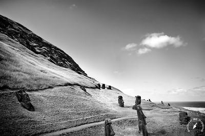 The slopes of Rano Raraku
