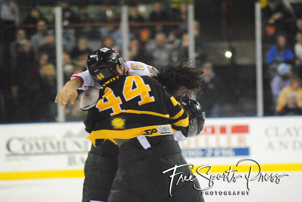 Rush vs Killer Bees (01/06/2012)