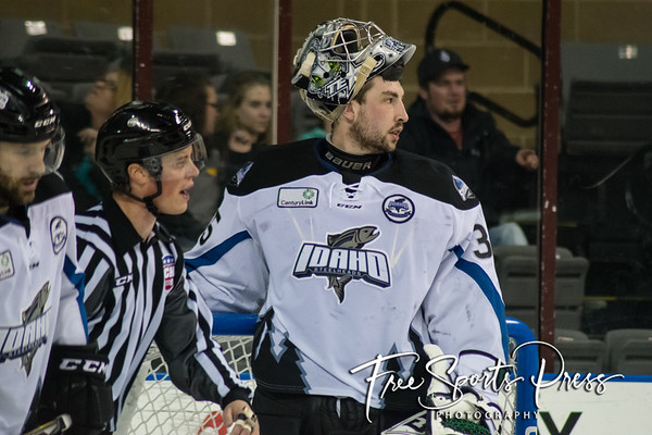 Rush vs Steelheads (03/03/2017)