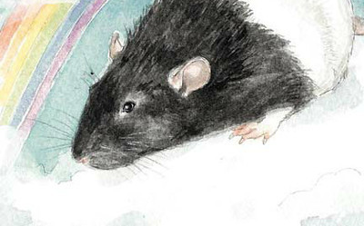 Compassionate Euthanasia of Pet Rats
