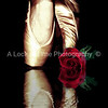 The ballet. Elegent and beautiful, matched only by the beauty of a rose