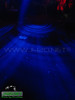 ''Purple Haze''-04-17-09-By ''cHuCkLeS'' (418)